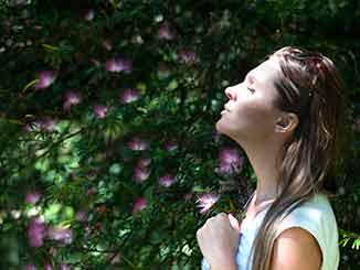 Mejor purificador de aire con filtro hepa opiniones