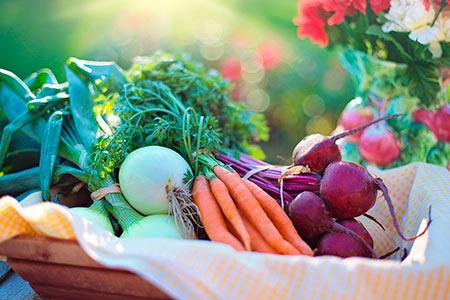 dieta para después de navidad y año nuevo verduras variadas