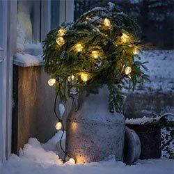 Cadena de luces Biergarten