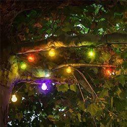 Cadena luces LED Biergarten multicolor para árbol
