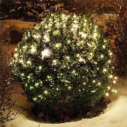 Malla de 160 luces LED en blanco cálido